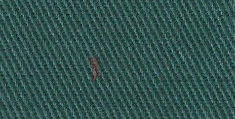 cotton drills forrest