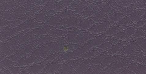 manhattan plains purple
