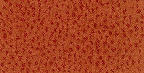 ostrich terracotta